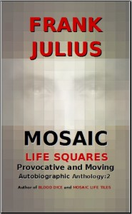 mosaic life squares front cover